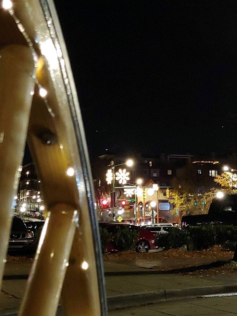 Christmas Horse Carriage Rides In Chattanooga, Tennessee