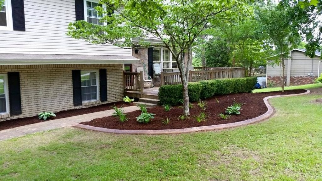 Chattanooga Tree Services